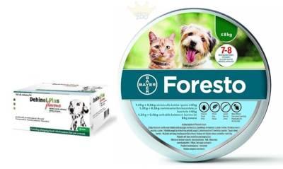 BAYER Foresto Antkaklis katėms ir šunims sveriantiems mažiau nei 8kg + Dehinel Plus Flavour 1