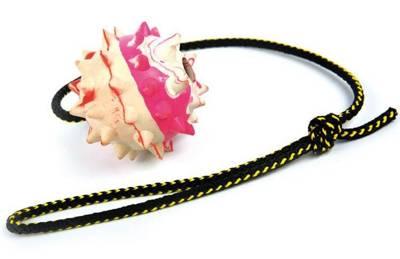 DINGO Kamuolys ant virvės su skambaliuku 60cm