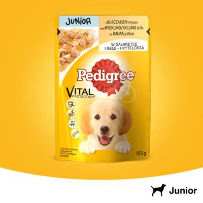 PEDIGREE Junior paketėlis 100g - drėgnas šunų ėdalas su vištiena ir ryžiais