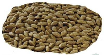 Purina Pro Plan Medium & Large 7+ Sensitive Optiderma, lašiša ir ryžiai 14kg