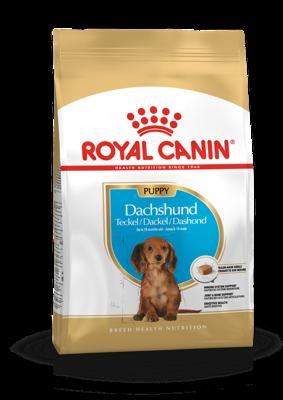 ROYAL CANIN Dachshund Junior 1,5kg + Royal Canin dovana